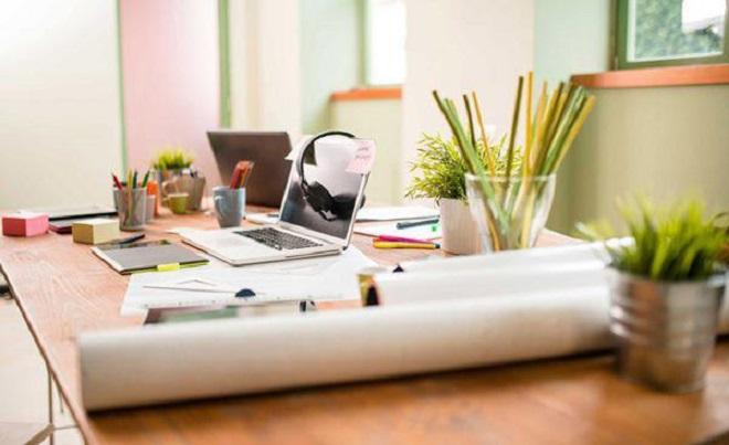 cây để trên bàn làm việc giúp bảo vệ nội thất và mang lại không khí trong lành